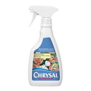Afbeelding van Chrysal Glory houdbaarheidsspray